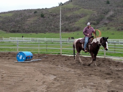 See the fun we have at De Frates Horsemanship - DE FRATES HORSEMANSHIP